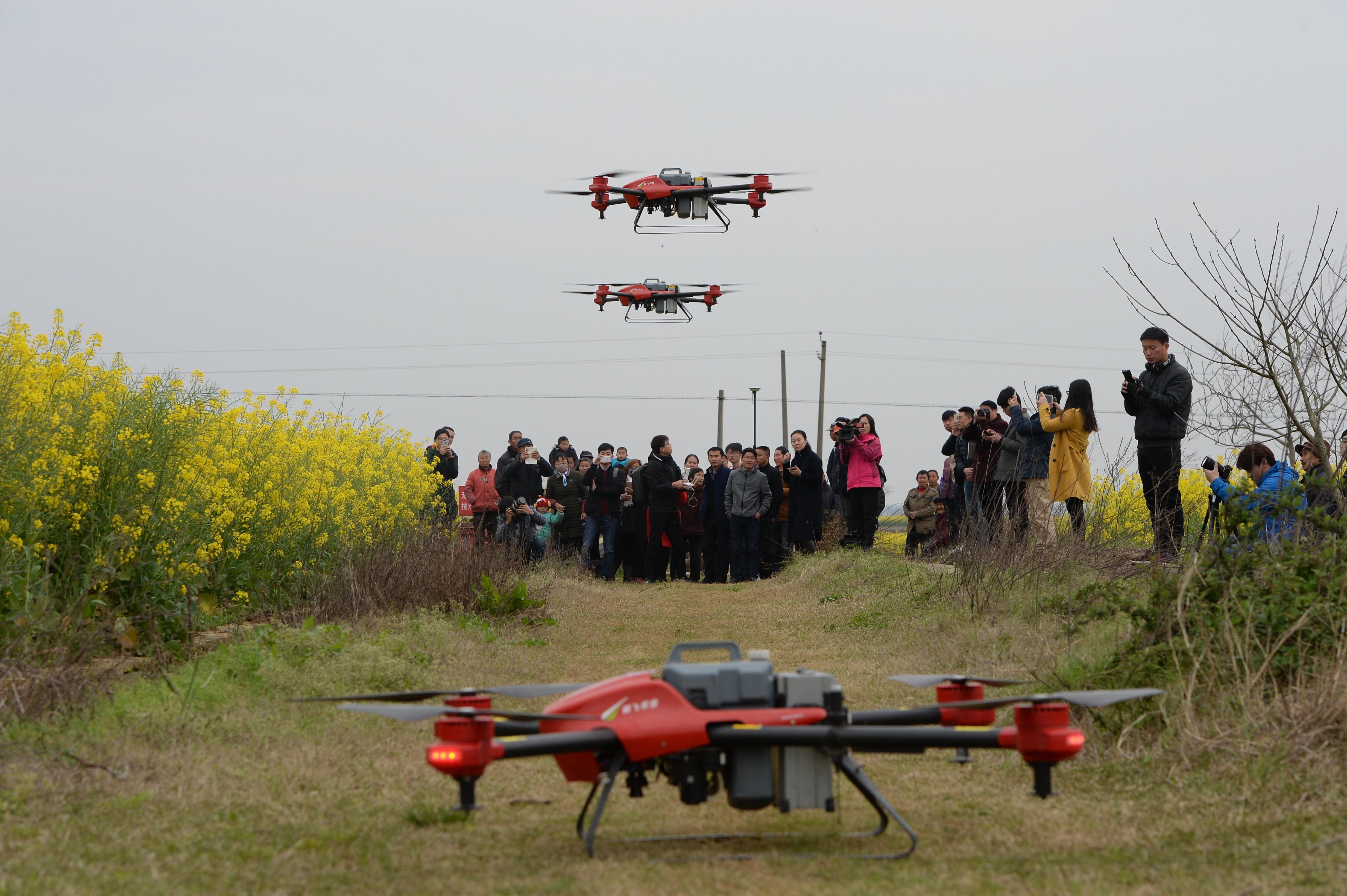 江西农村的油菜花田里,惊现一群无人机,引发村民围观。