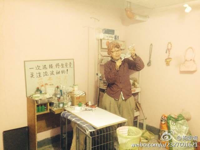 张维维已能自己治疗流浪狗的小病