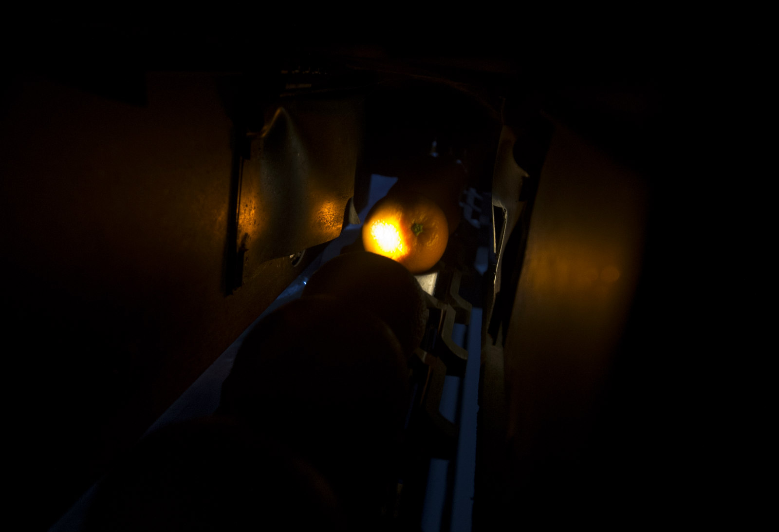 """在光电分选设备的""""暗室""""内,每颗橙子都会像这样接受""""X光""""的检验。_meitu_17"""