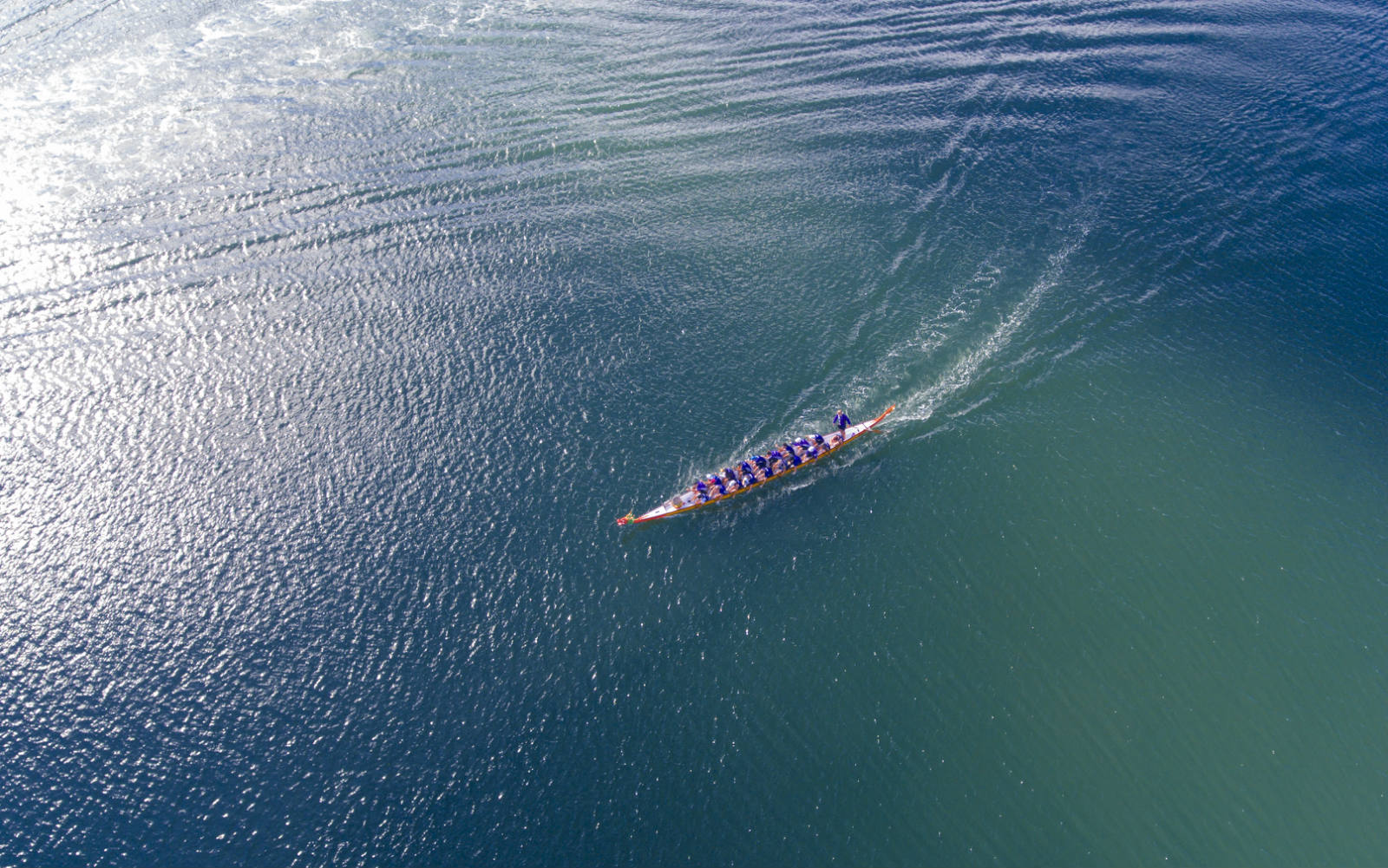 在迎接端午节的到来,澳洲华人王娇娇在天猫上购买一艘来自杭州千岛湖的龙舟行驶在澳洲悉尼情人港3_meitu_6