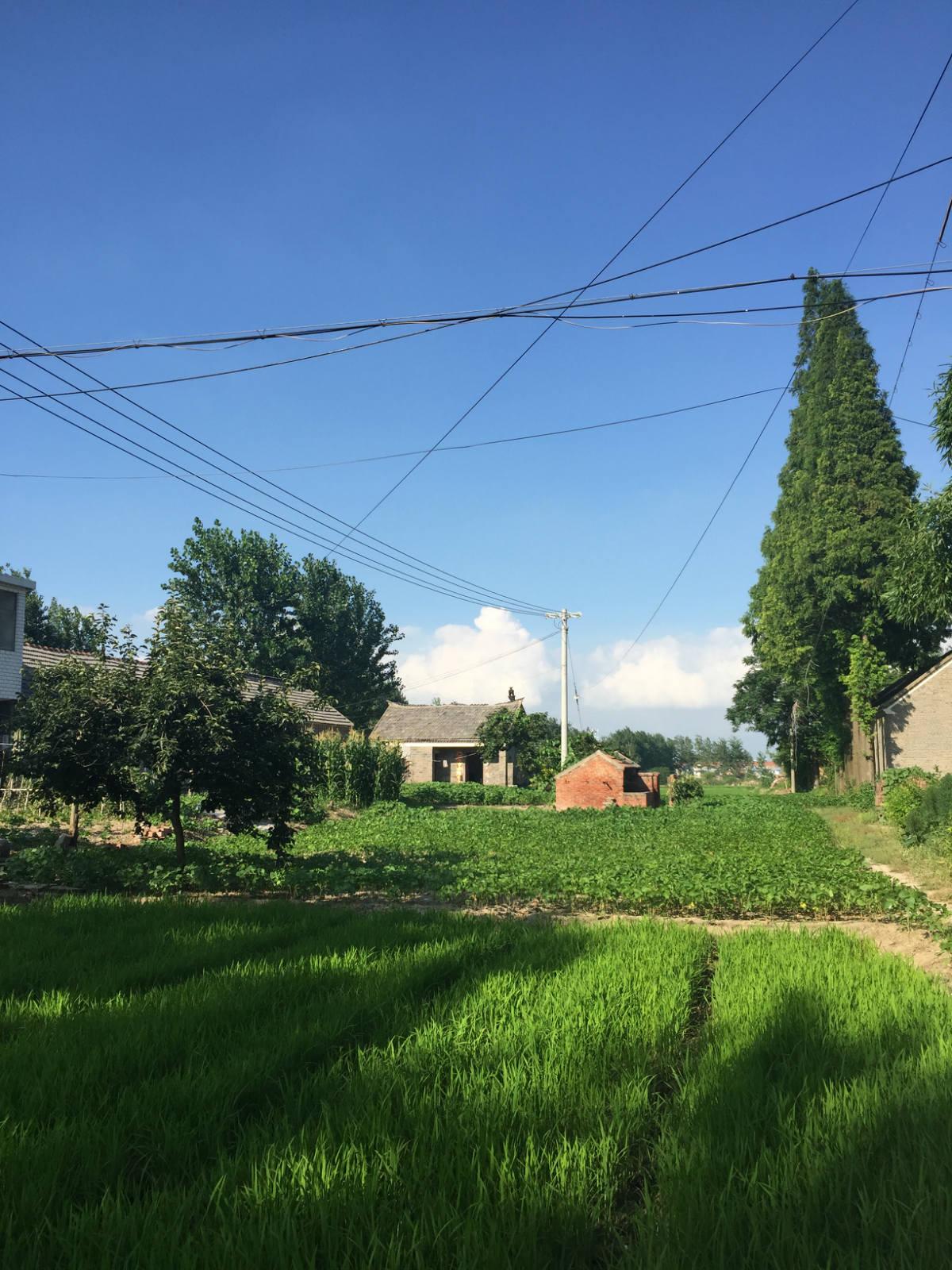 0乡村风景很美,多年来留守老人多以务农为生_meitu_3