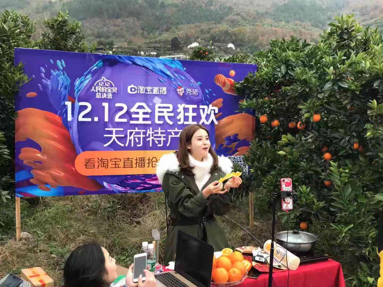 淘宝双12四川农副产品基地产业带直播