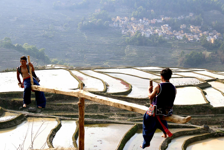 哈尼人在元阳梯田上种出的元阳红米,真正的纯天然。_meitu_5