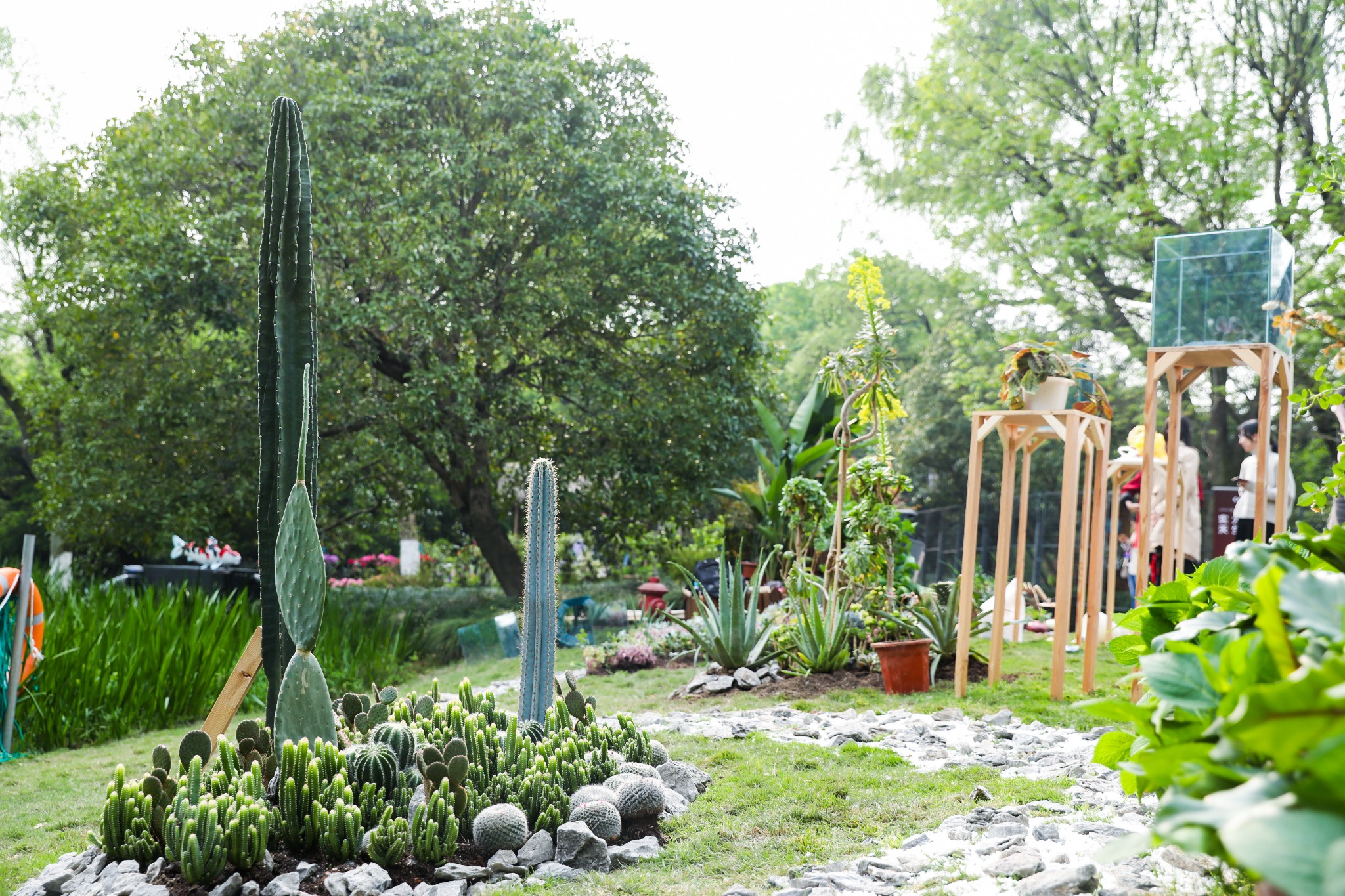绿马甲社区花园